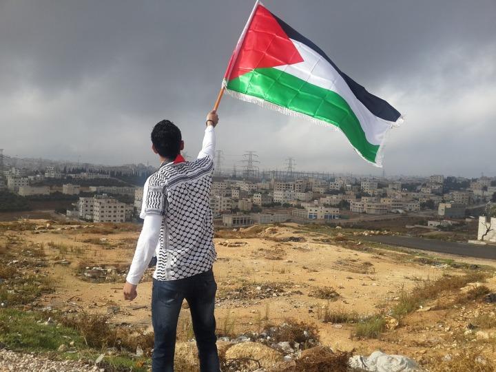 Flag Hejaz Arab Man Waving